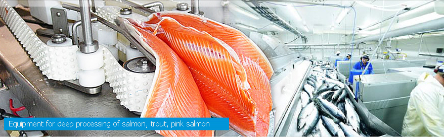 Equipment for deep proccessing of salmon, trout, pink salmon